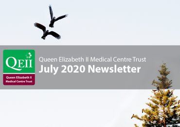 July 2020 Newsletter news banner